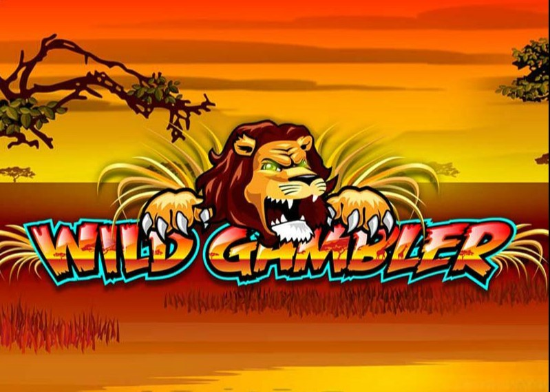 The wildlife slot game